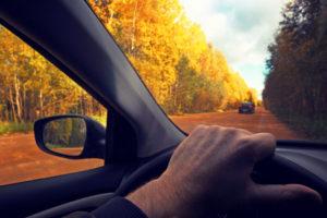 Thanksgiving Road Trip Tips
